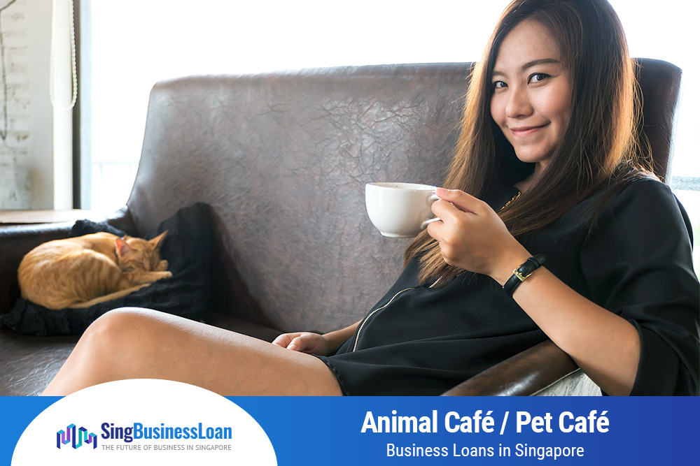 Animal-Pet-Cafe-Business-Loans