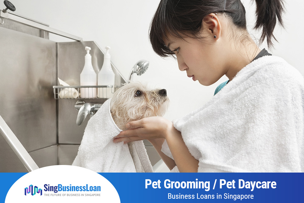 Pet-Grooming-Pet-Daycare-Business-Loans