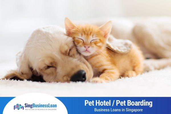 Pet-Hotel-Pet-Boarding-Business-Loans-Singapore-SBL-Sing-Business-Loan